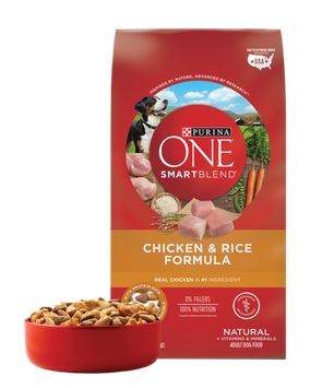 PURINA ONE® SMARTBLEND® Chicken & Rice Formula Natural Adult Dog Food