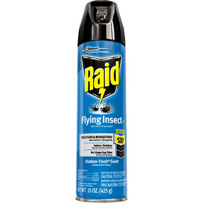Raid Flying Insect Killer Spray Outdoor Fresh Scent