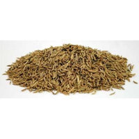 Caraway Seed whole 2oz (HCARSW) -