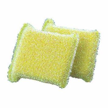 Casabella 2pk Sparkle Non-Stick Safe Scrub Sponge (Lime Green)