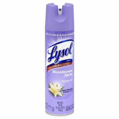 Lysol Disinfectant Spray, Early Morning Breeze, 19 Ounce Cans (Pack of 2)