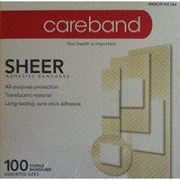 Careband Sheer Adhesive Bandages -100 Assorted Sizes
