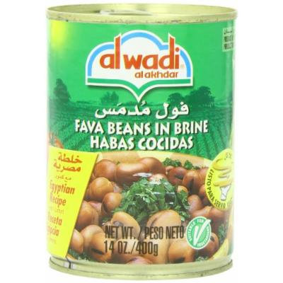 Al Wadi Foul Moudammas - Fava Beans in Brine- Egyptian Recipe (Cumin), 14-Ounce (Pack of 12)