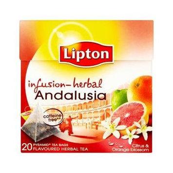 Lipton Infusion Herbal Tea - Andalusia (citrus peels and orange blossoms) - Premium Pyramid Tea Bags (20 Count Box) [PACK OF 3]