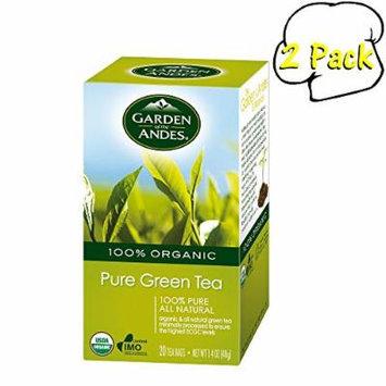 Organic Green Tea, 20 Bags, 2 Per Case