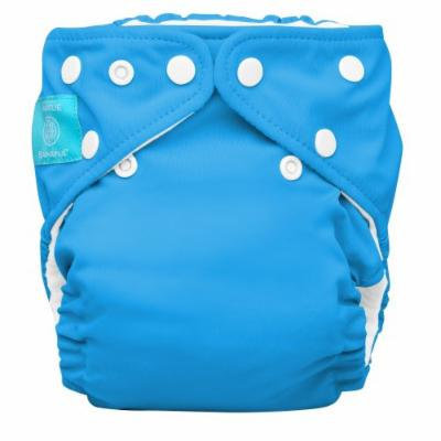 Charlie Banana 2 in 1 Eco-Friendly Hybrid Reusable Cloth Diaper - Large (Turquoise)