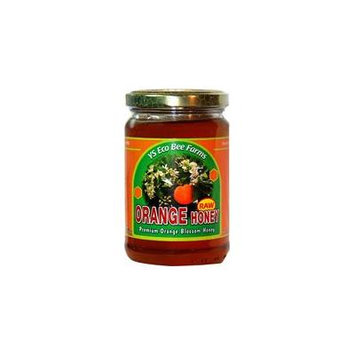 YS Eco Bee Farms Raw Orange Honey -- 13.5 oz