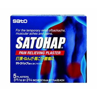 Satohap Medicated Pain Pad, 5 Count