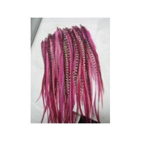 Feather Hair Extensions 6