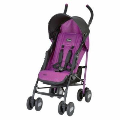 Chicco Echo Stroller purple
