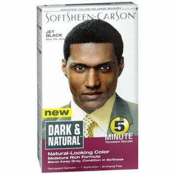 Dark and Natural 5 Minute Permanent Hair Color, Jet Black 1 kit