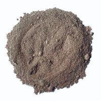 Boletes Powder - 16 Oz Jar Each