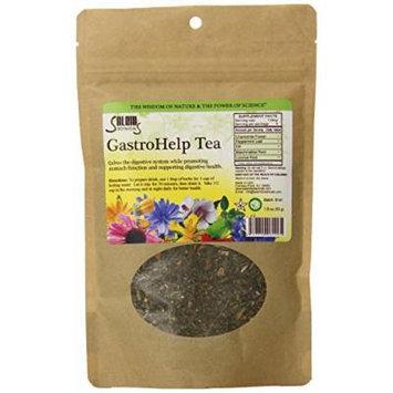 Salem Botanicals Gastro Help Tea, 1.8 Ounce