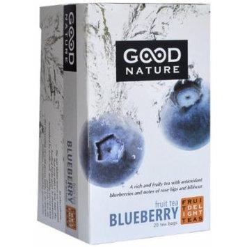 Good Nature Blueberry Fruit Tea, 1.4 Ounce