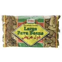 Ziyad Fava Beans, Large, 16 Ounce