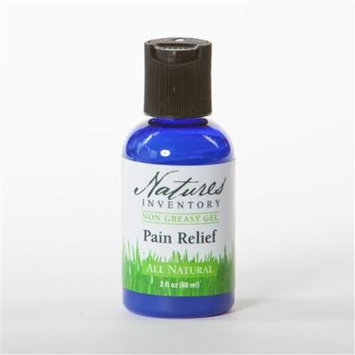 Nature's Inventory Pain Relief - Non Greasy Formula
