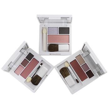 Clinique Colour Surge Shadow Duo / Blush Palette