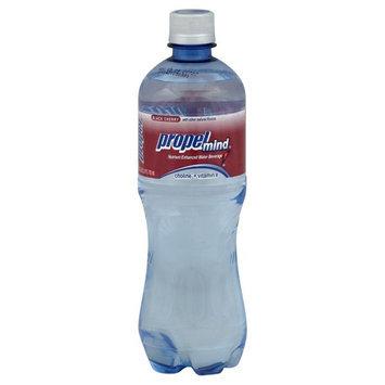 Propel Zero Water Beverage - Black Cherry - 1 Bottle (24 oz)