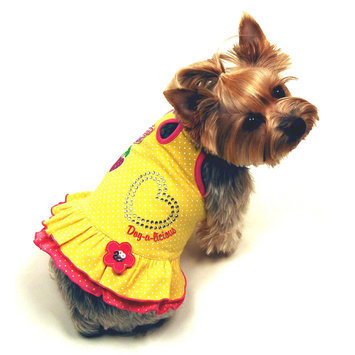 Simply Dog Andie Dog Dress Small - SIERRA ACCESSORIES