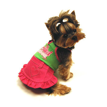 Simply Dog Spoiled Rotten Dog Dress X Small - SIERRA ACCESSORIES
