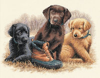 Dimensions Chew Toy Counted Cross Stitch Kit