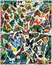 White Mountain Puzzles Butterflies Puzzle