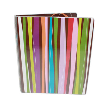 Carolina Pad Vinyl Binder Dots - CAROLINA PAD & PAPER COMPANY