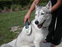 Lentek Koolatron Ionic Waterless Pet Bath Ultra Brush ()