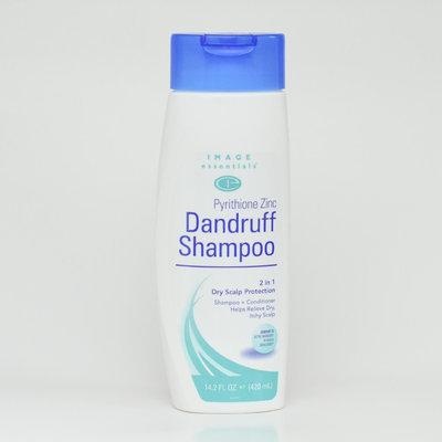 Kmart Corporation 2 in 1 Dry Scalp Protection Dandruff Shampoo, 14.2 fl oz (420 ml)