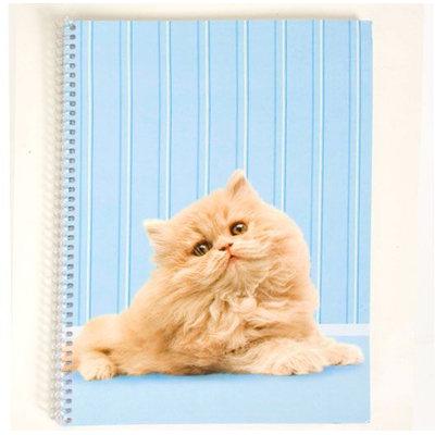 Aljan Corp. Kitty Kitty 1 Subject Notebook