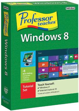 Individual Software Professor Teaches Windows 8