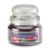 Langley Products L.l.c. 9-Ounce Jar Candle - Raspberry Pomegranate