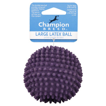 Kmart Corporation Latex Ball, Large, 1 toy