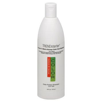 Cam Consumer Products, Inc. Color Shampoo, Color Protect, 16 fl oz (473 ml)