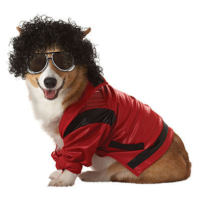 California Costumes Pop King Pet Costume