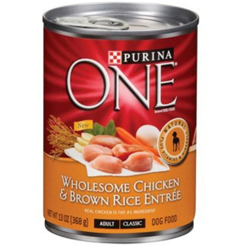 PURINA ONE® Wholesome Chicken & Brown Rice Wet Dog Food