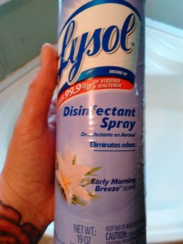 Lysol® Early Morning Breeze™ Scent Disinfectant Spray 12.5 oz. Bottle uploaded by Shannon S.