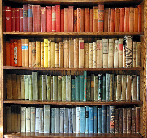 DIY Home Bookshelf