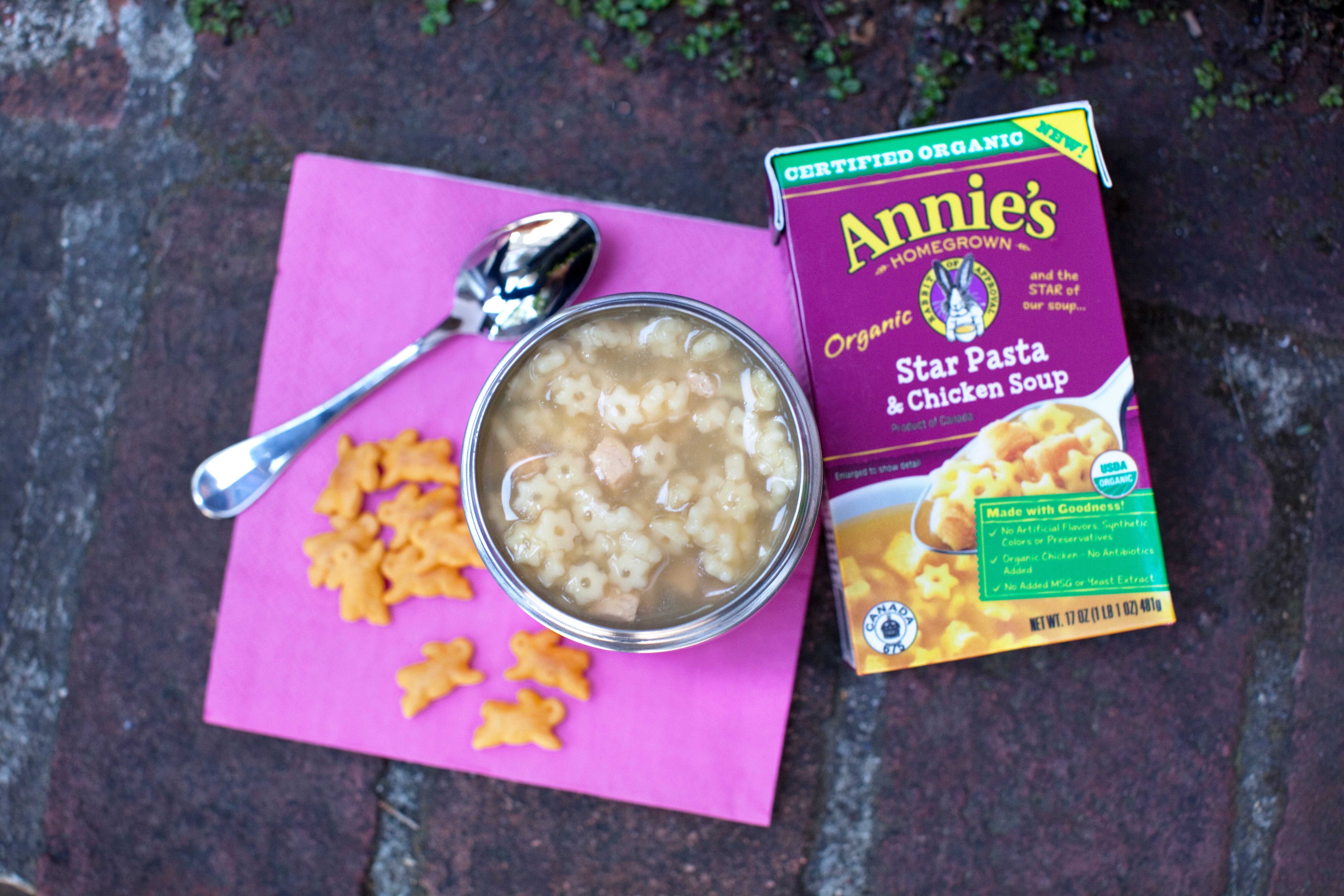 Annies Homegrown Organic Soups