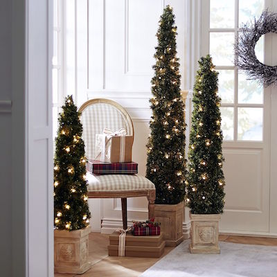 Pre-Lit Pencil Spruce Entry Trees