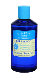 tea tree mint shampoo