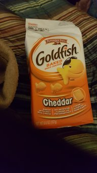 Photo of Goldfish® Doyen Cheddar uploaded by Diana W.