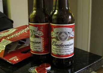 Budweiser Beer uploaded by Caralee P.