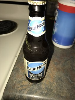 Blue Moon Seasonal Collection Harvest Pumpkin Ale uploaded by Amber B.