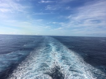 Norwegian Cruise Line uploaded by Ashley M.