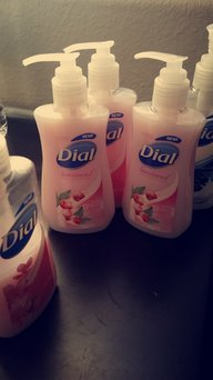 Dial Antibacterial Liquid Hand Soap with Moisturizer uploaded by Carol P.
