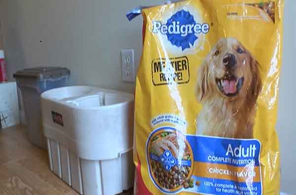 Photo of Pedigree® Complete Nutrition Adult Dog Food uploaded by paola m.