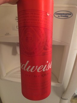 Photo of Budweiser Beer uploaded by Lorena R.