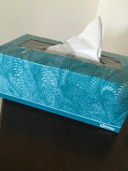 Kleenex® Facial Tissue uploaded by Jessica I.