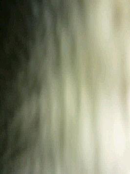 Video of L'Oréal Paris La Palette Nude uploaded by Leona D.